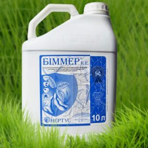 Біммер 1