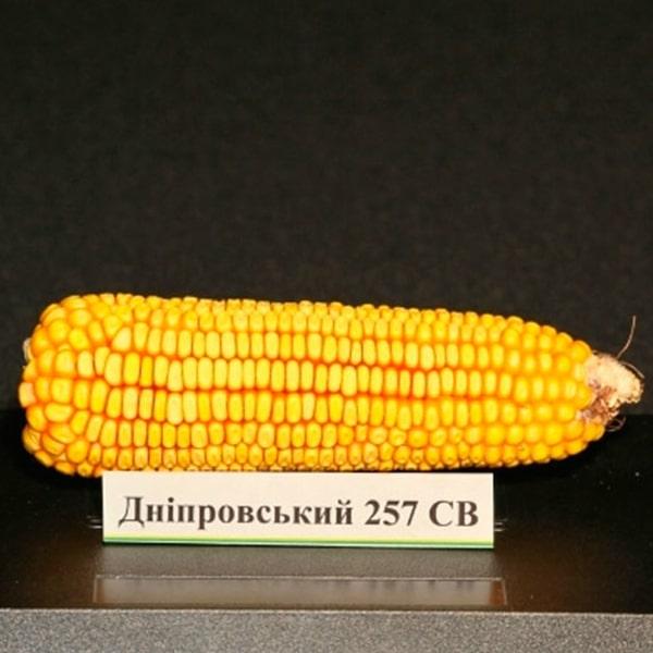 Дніпровський 257 СВ